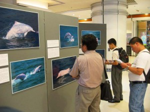 Tsing Yi Exhibition-1 (1)