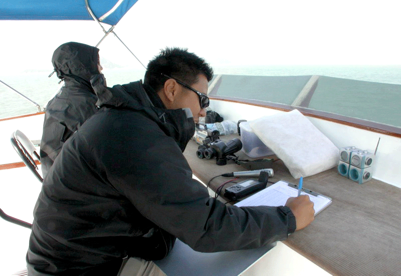 Research out at sea